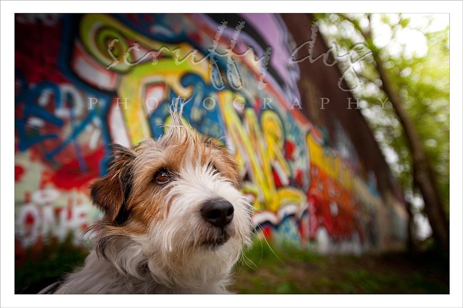 graffiti-167