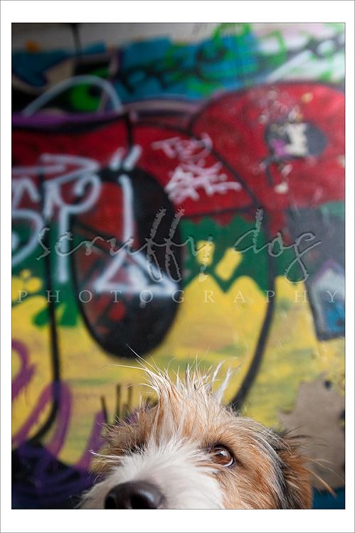 graffiti-221