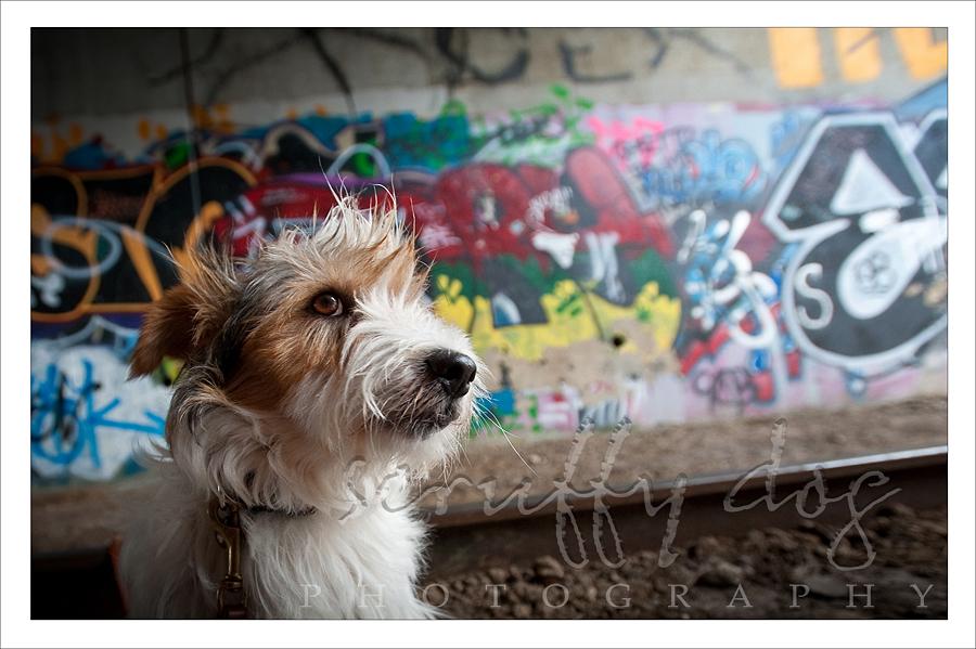graffiti-309