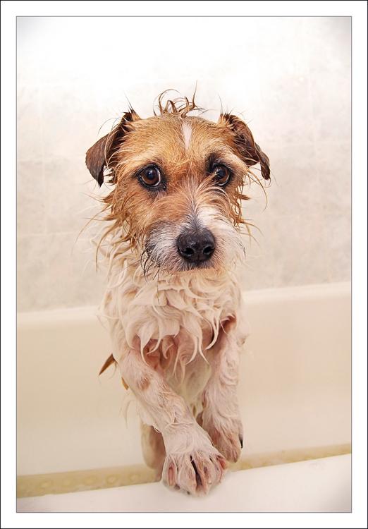 morley-bath