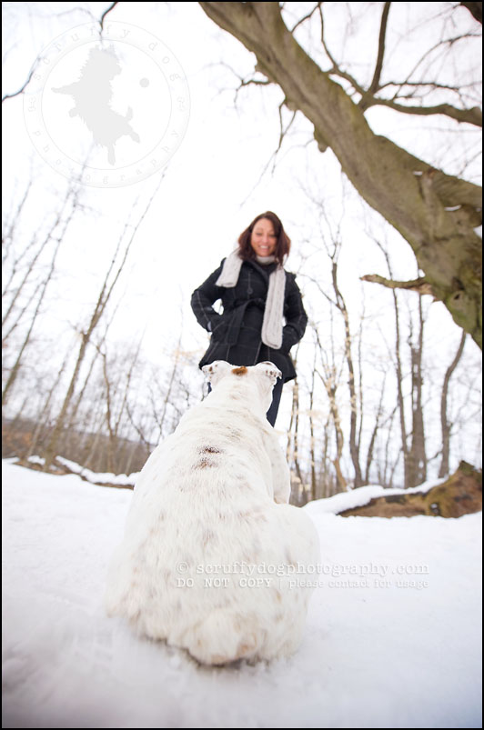 10-waterloo-ontario-dog-photographer-pet-bulldog-emma fleming-252