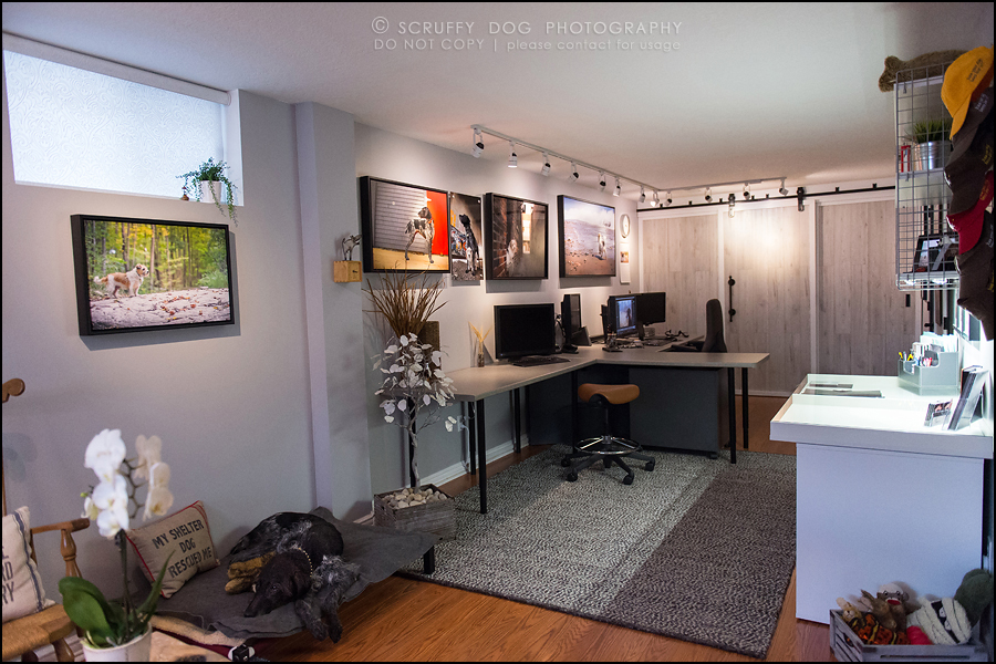 11 studio reno-29