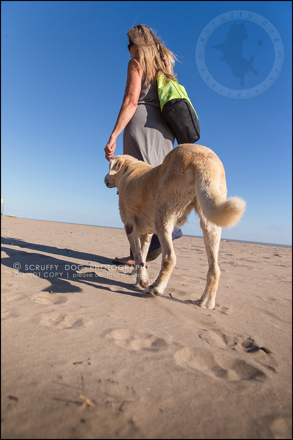 23_ontario_pet_photographer_chewey johnson-629