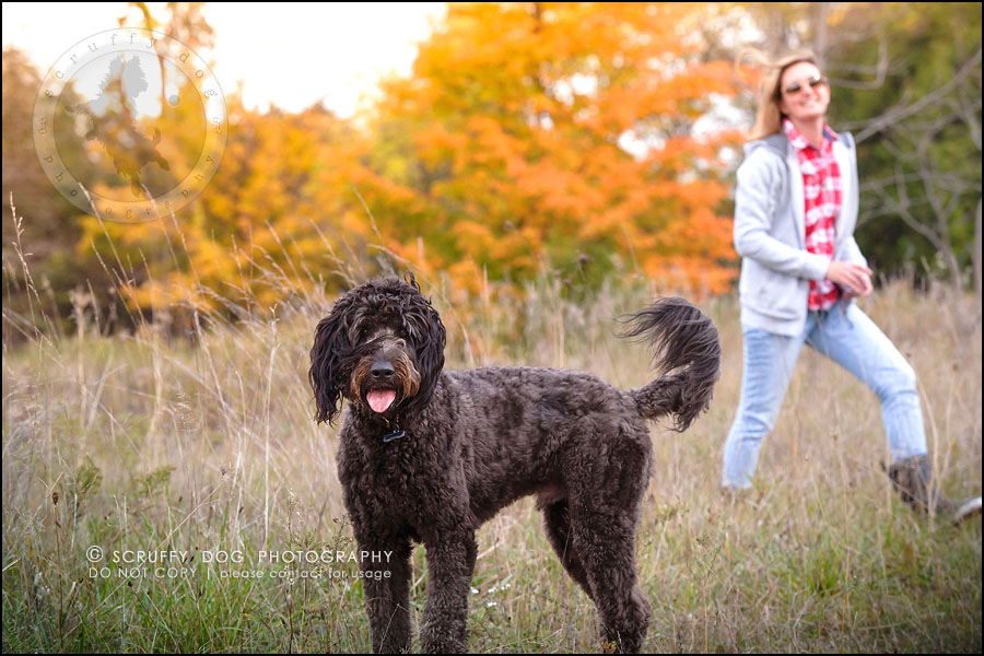 12_waterloo_ontario_best_pet_photographer_murphy odonovan-315
