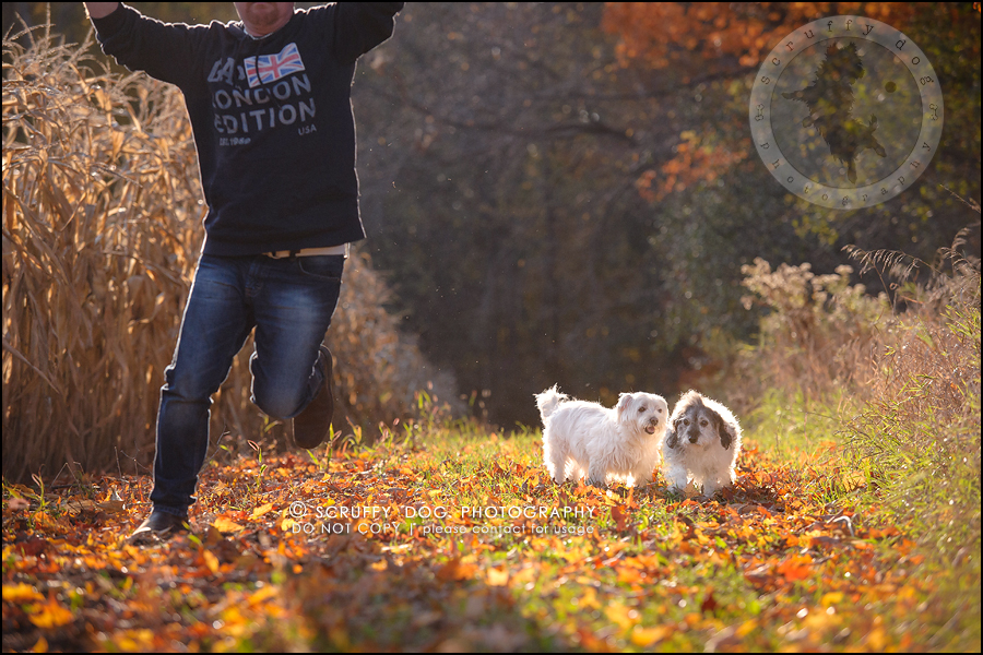 20-toronto-ontario-best-professional-pet-photographer-mika bobby worton-864