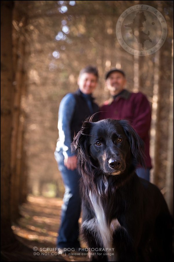 22-waterloo-ontario-professional-dog-photographer-hudson manning-751